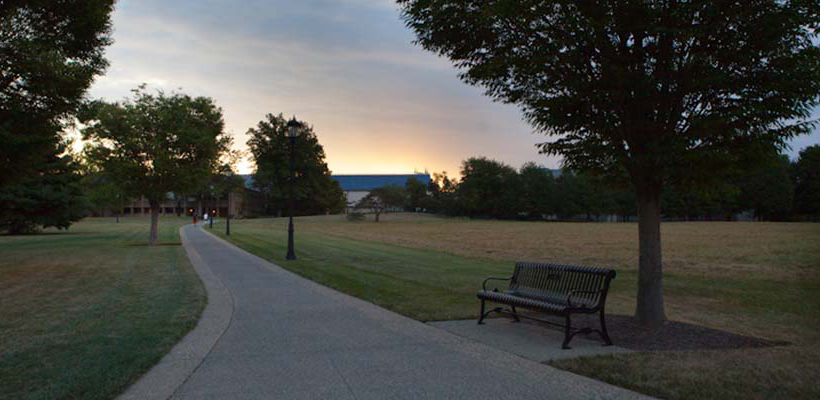 a view of the campus meadow and the sun setting behind the library